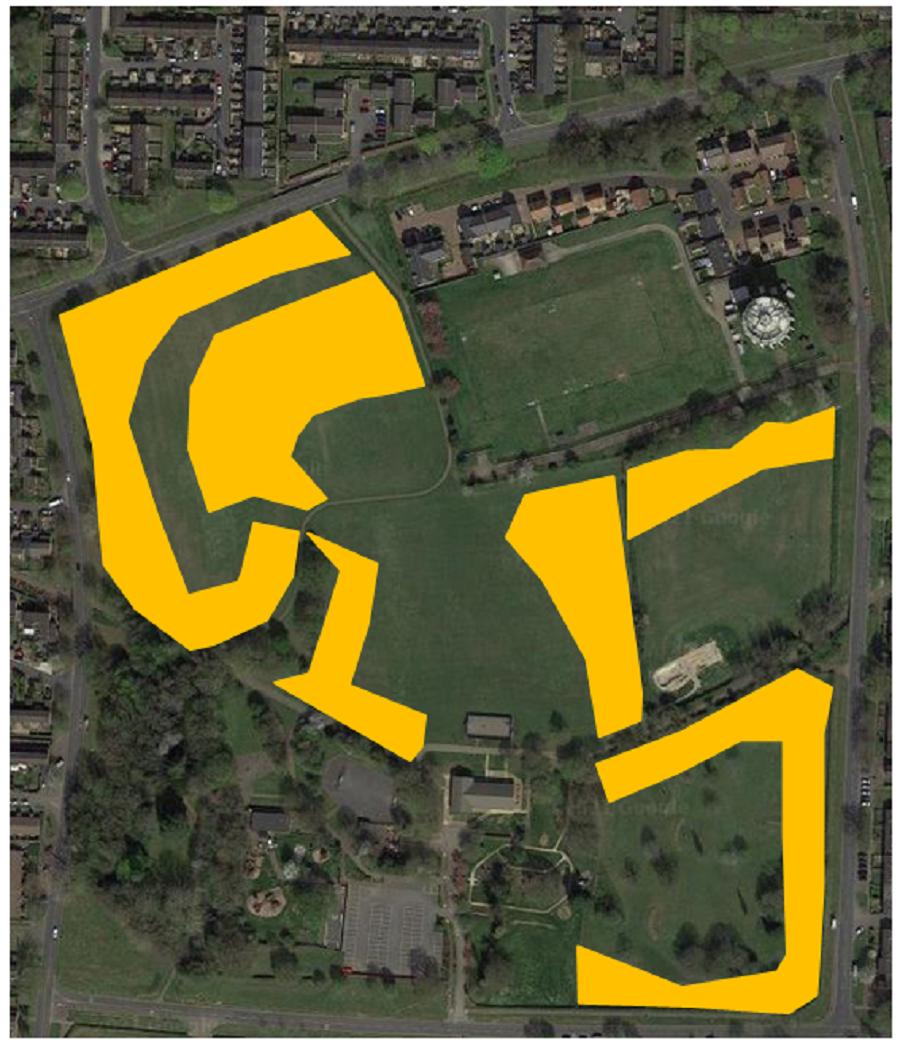 Hampson Park Meadow Grassland Management
