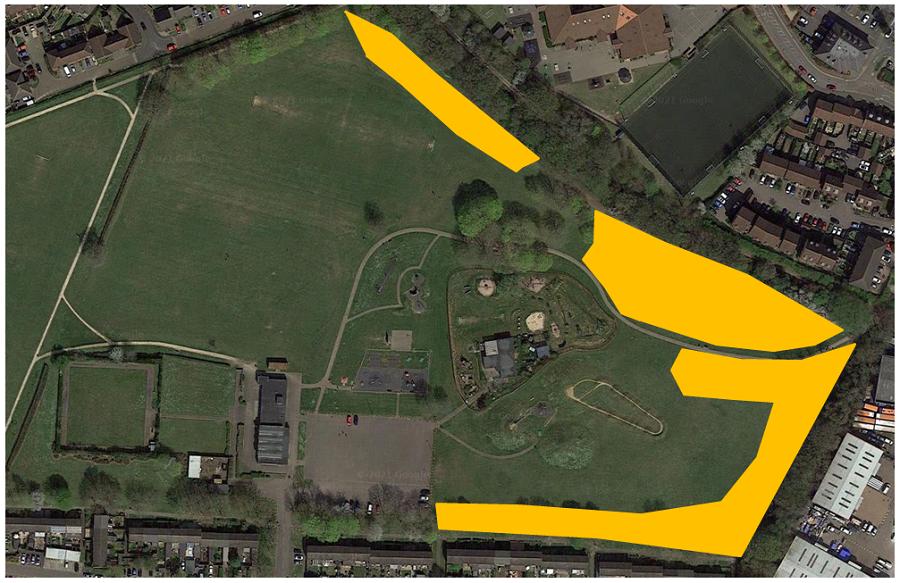 St Nicholas Park Meadow Grassland Management