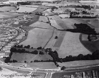 Fairlands Farmland, 1964