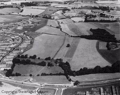 Fairlands Farmland, 1964