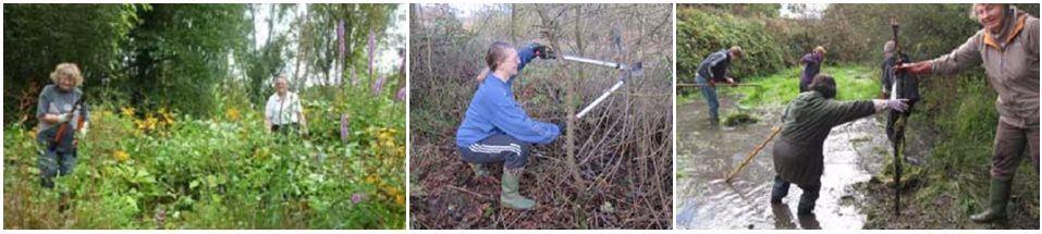 Green Space Volunteers at work