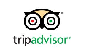 Stevenage Museum Tripadvisor page