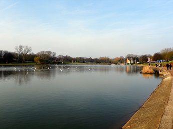 The Main Lake at Fairlands